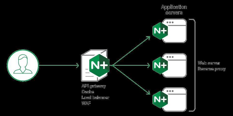 NGINX Plus