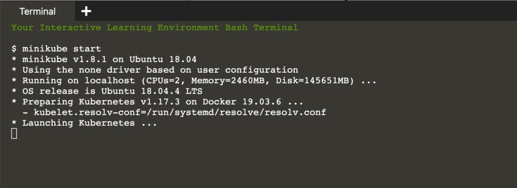 Cloud Native PostgreSQL Interactive Demo | minikube start log